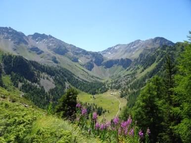 Val d'Aosta82