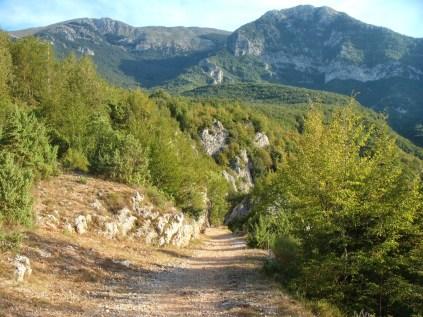Sentiero per Trisulti