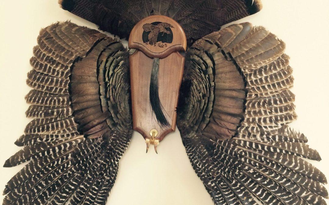 Turkey Hunting Obsession!
