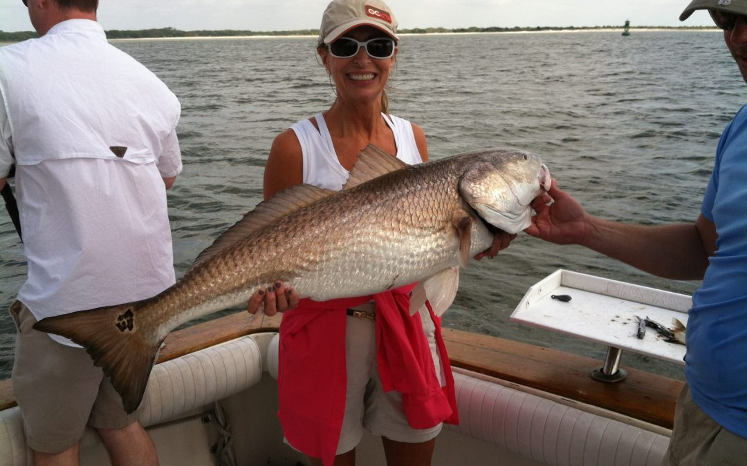 Red Fish Monster
