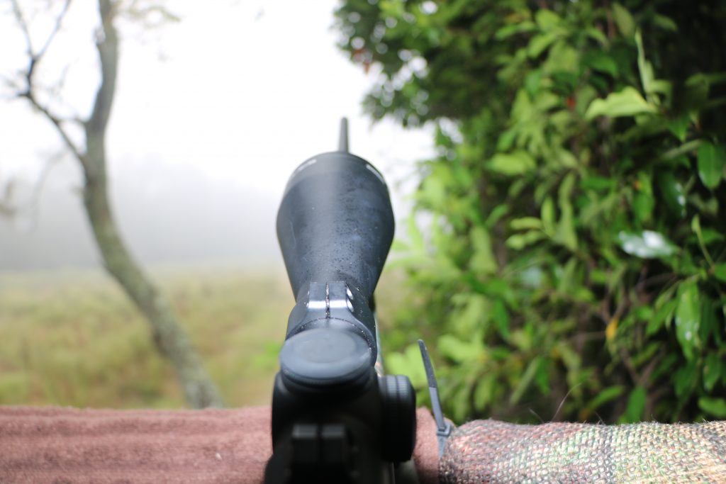 What it looks like when the fog rolls in while you are hunting whitetails.
