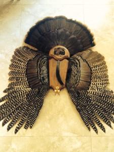 trophy wild turkey mount
