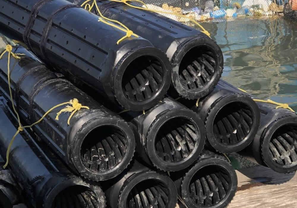 澎湖漁業捕鰻