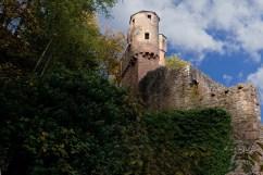 Burgruine in Neckarsteinach