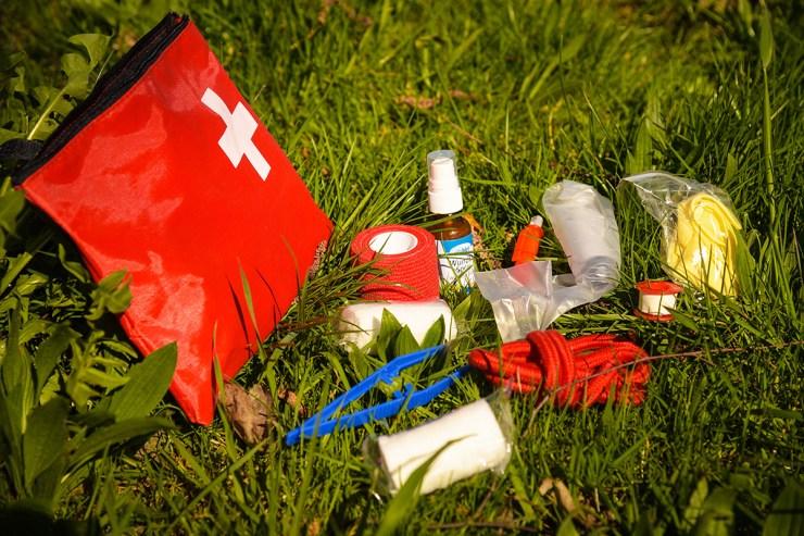 Verbandszeug, Zeckenzange sowie Desinfektionsspray gehören in die Notfallapotheke.