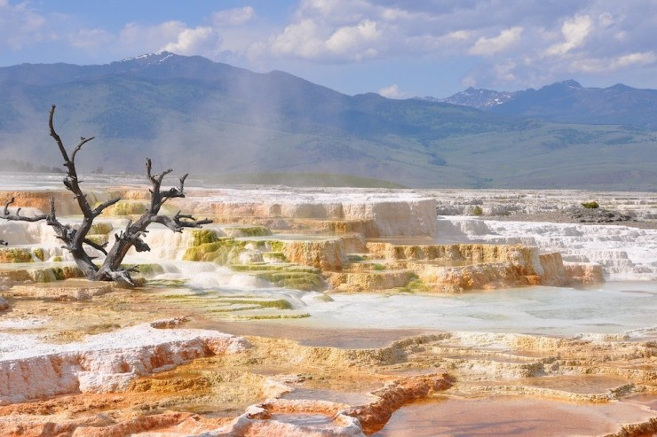 Vulkanogene Landschaft im Yellowstone Nationalpark