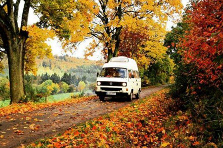 Ein VW-Bulli auf einem Feldweg im Herbst.