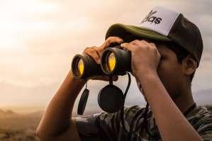 Binoculars for Game Viewing