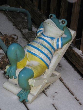 Relaxing frog in snow