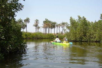 randonnee-kayak-sine-saloum (5)