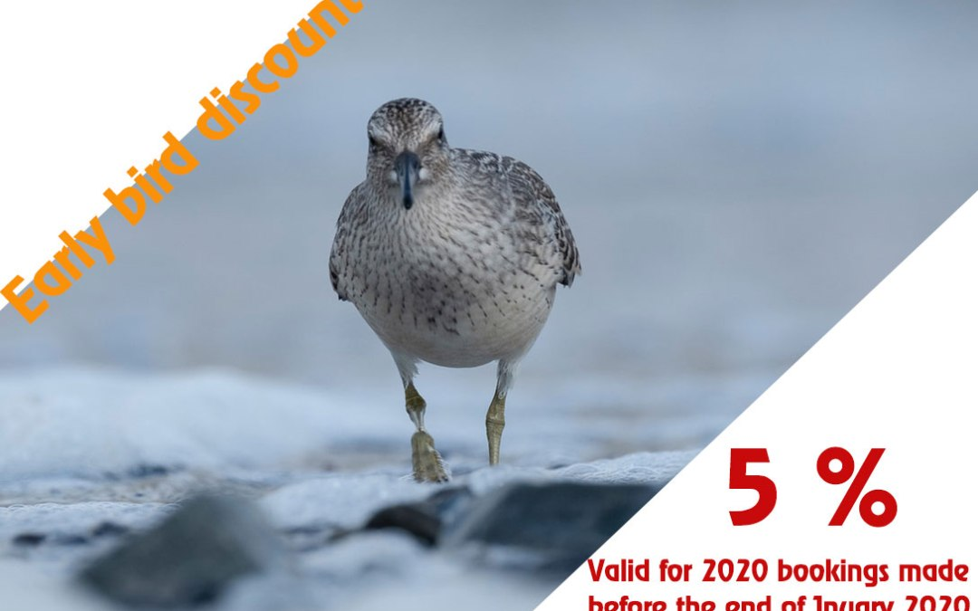 5% early bird discount valid in January 2020