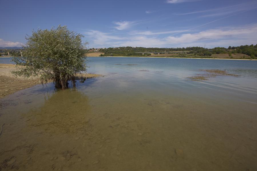 lago bilancino030