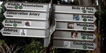 Currumbin Wildlife Sanctuary | Campervan Finder