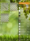 chess8