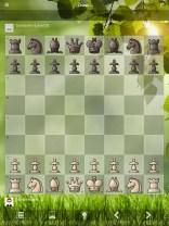 chess9