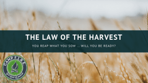 The Law of the Harvest applies to your money as well