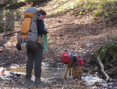 Outdoor Adventure Dog Backpack