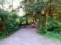 Bogachiel-State-Park-Campground-05