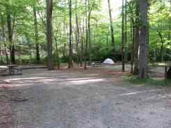 Cataloochee Campground in Great Smoky Mountains National Park near Waynesville North Carolina2