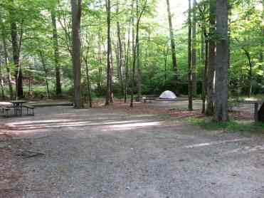 Cataloochee Campground in Great Smoky Mountains National Park near Waynesville North Carolina2