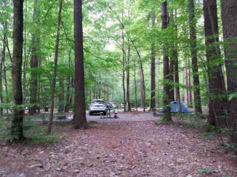 Cataloochee Campground in Great Smoky Mountains National Park near Waynesville North Carolina4