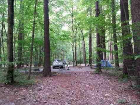 Cataloochee Campground in Great Smoky Mountains National Park near Waynesville North Carolina4