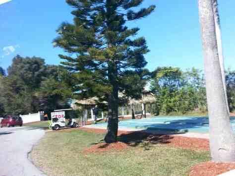 Crooked Hook RV Resort in Clewiston Florida4