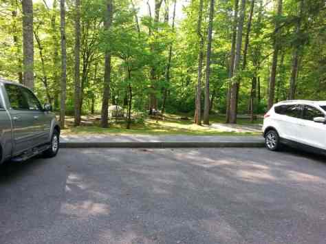 Deep Creek Campground in Great Smoky Mountains National Park near Bryson City North Carolina2