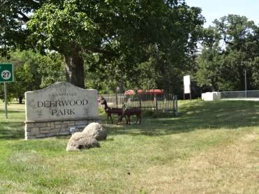 Deerwood sign from road1