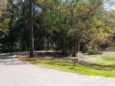 Highlands Hammock State Park in Sebring Florida6
