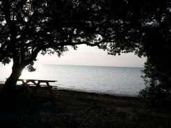 Long Key State Park in Long Key Florida2