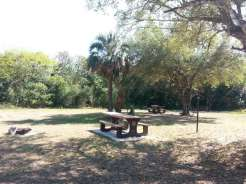 Mitchell's Landing Campground in Big Cypress National Preserve5