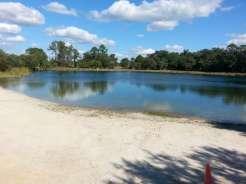 Oscar Scherer State Park in Osprey Florida2