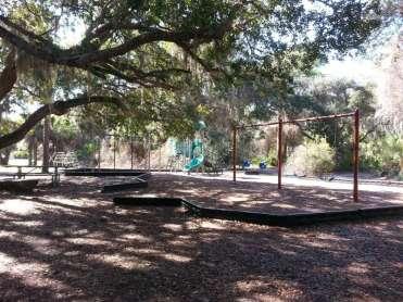 Oscar Scherer State Park in Osprey Florida6