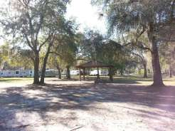 Peace River Campground in Arcadia Florida04