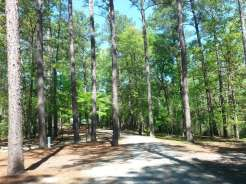 Sesquicentennial State Park in Columbia South Carolina5