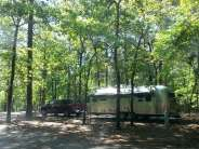Sesquicentennial State Park in Columbia South Carolina7