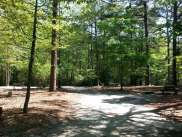 Sesquicentennial State Park in Columbia South Carolina8