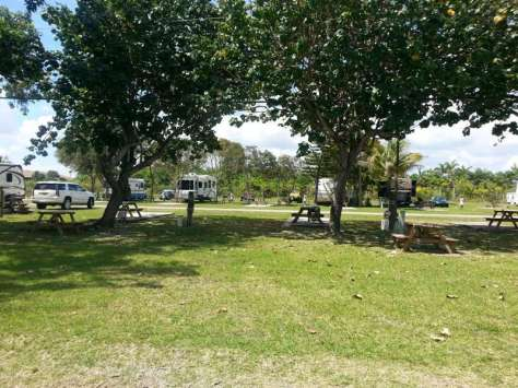 Southern Comfort RV Resort in Homestead Florida (Florida City) 2