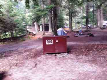 avalanche-campground-glacier-national-park-08