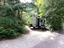 avalanche-campground-glacier-national-park-13