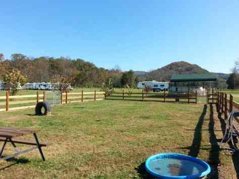 Big Meadow Family Campground in Townsend Tennessee Dog Run