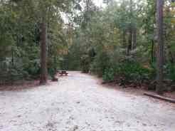 Blythe Island Regional Park in Brunswick Georgia Large Pull Thrus