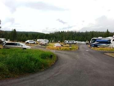 bridge-bay-campground-yellowstone-national-park-03