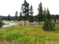 bridge-bay-campground-yellowstone-national-park-05