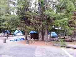 bridge-bay-campground-yellowstone-national-park-10