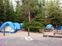 bridge-bay-campground-yellowstone-national-park-11