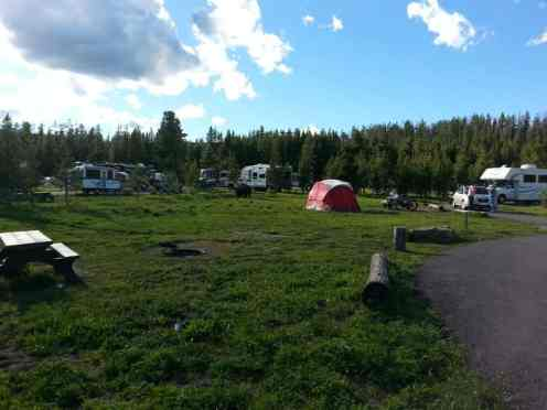 bridge-bay-campground-yellowstone-national-park-sites