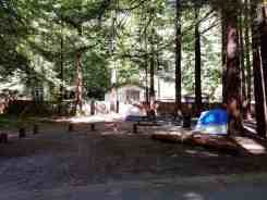 burlington-campground-humboldt-redwoods-state-park-08