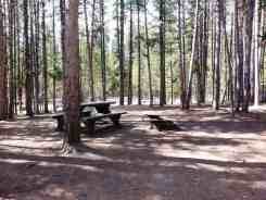 canyon-campground-yellowstone-national-park-17
